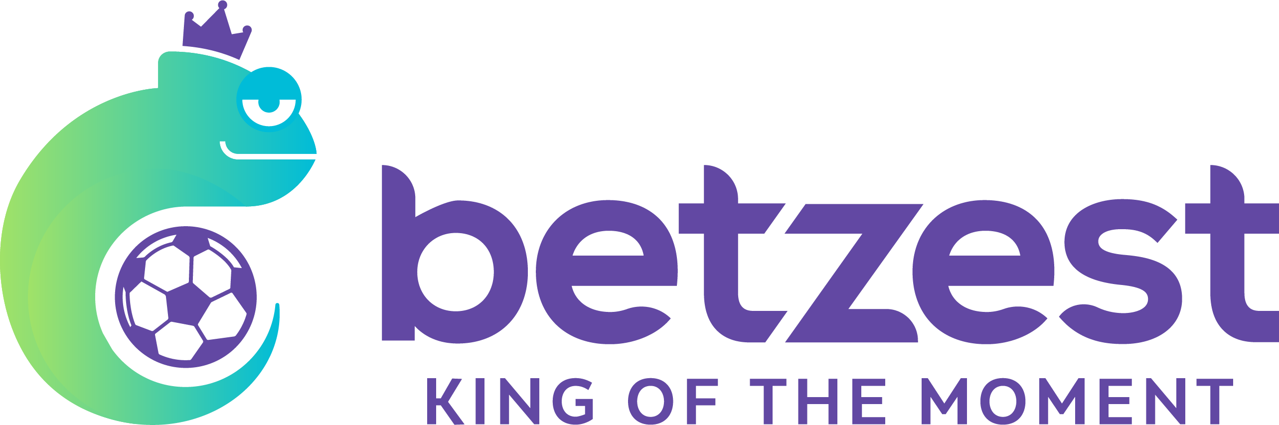 Betzest Sportsbook Review 🥇